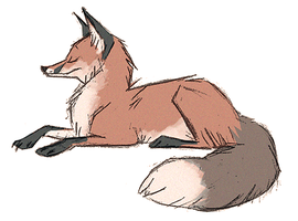 Fox by Skia