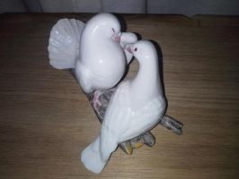 Pair Of White Doves by AlmightyPineapple