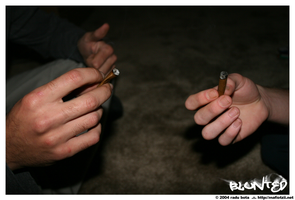 blunted by photobox
