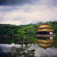 The golden temple in the old capital by sally65356