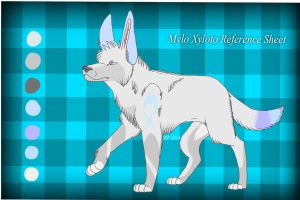 Mylo Xyloto Reference Sheet 2014 by MorningAfterWolf