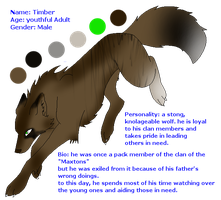 Timber the Wolf by Shinx07