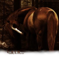 Cain -- request by aondarii
