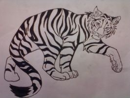 Tiger - unfinished by galis33