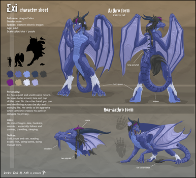 Exi's Character Sheet by DragonExiles