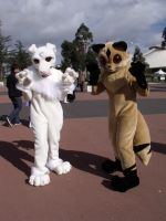 Manifest2010: Fursuits by ShiranuiArcher