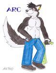 Arc before shower by AnthoFur