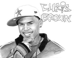 Chris Brown by Jerry LaVigne by jerrylavignejr