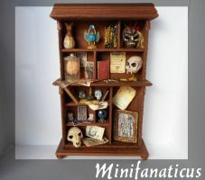 The Dreadful Curio : Penny Dreadful Cabinet by Minifanaticus