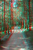 The Path2 3D anaglyph by yellowishhaze