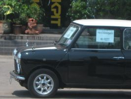 1961 Mini Cooper by pete7868