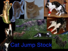 Cat Jump Stock Package by Kiara-Vestigium