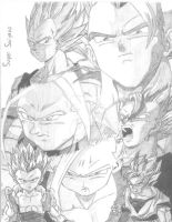 DBZ- Super Saiyans by xbrightwingx