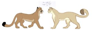 Cougar to Cougar by whisperpntr