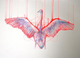 experimenting/sketching.... by LouiseMcNaught