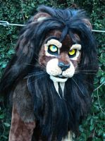 lion close up by LilleahWest