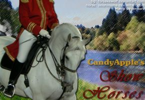 Banner for CandyApple by lee-mare