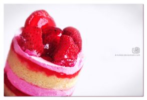 Strawberry cake_1 by NvLdai
