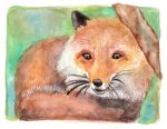 Fox by Paintwick