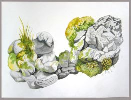 rocks and moss_2 by hollrock