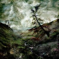 Winter's Gibbet by hold-steady