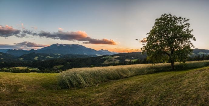 Panoramic view at Sentanel, Koroska by luka567