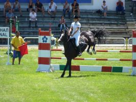 Competition 17.06.2012 by chantichka