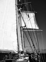 Tall ship by renzipoo