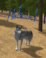 wolfquest MEEEE :D by k-9girl