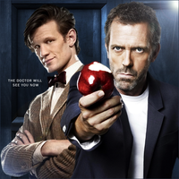 Doctor and House by PZNS