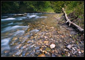 Creek - 01 by AndreasResch