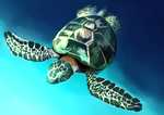 Turtle + Speedpaint by SaturnGalaxy