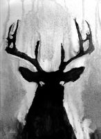 Whitetail - Buck by Devin-Francisco