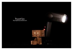 Danbo feeling lonely by NightSheep