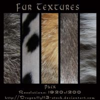 Fur Textures Pack by BFstock