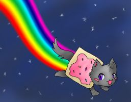 Nyan Cat by Brookiethecookieface