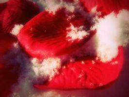 fake rose petals in the snow by mysteriousfantasy