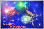 xX~Team Phoenix~Xx by leothehedgehog071000