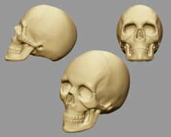 Skull Speedsculpt by o--Xypher--o