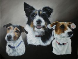 Radar, Echo and Beanie by petportraitman