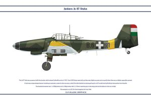 Ju 87 Hungary 3 by WS-Clave