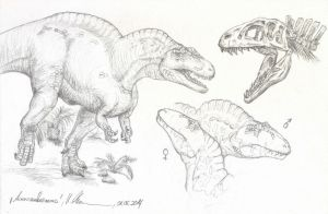 Acrocanthosaurus sketch - 20140601 by c-compiler