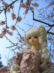 Young Marie in Plum Blossoms by aimeekitty