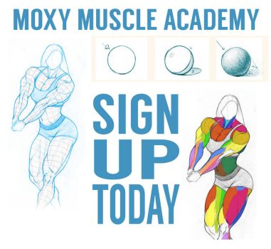Moxy Muscle Academy Launched! by MoxyDoxy
