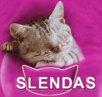 Slendas Cat Food by oldschooI