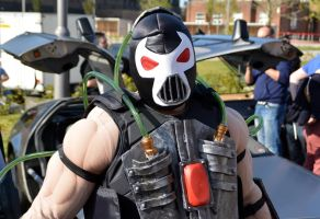 Stoke-Con-Trent 2014 (49) Bane by masimage