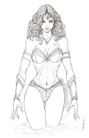 Wonder Woman Bikini Commission by jamietyndall