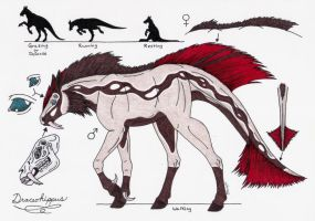Draceohippus Species Sheet by Shara-Moonglow