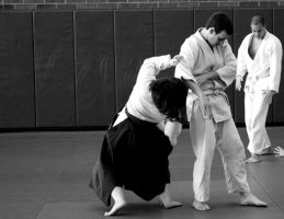 Aikido Seminar February 2014, 5 by bebelee