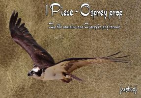 Cutout PNG - Osprey 8 by justiej